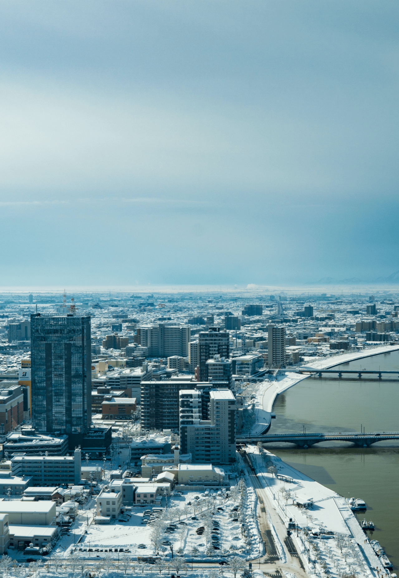 空から撮った町の写真